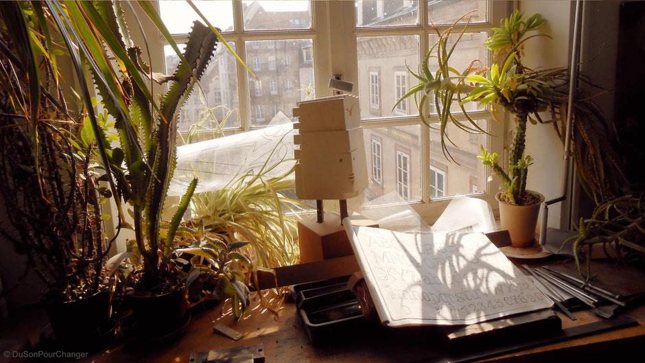 sculpture et cactus à la fenetre des ateliers de l'oeuvre notre-dame de strasbourg du son pour changer