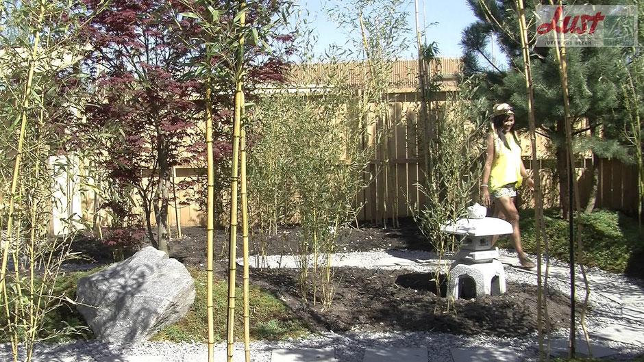 Die Lahrer Partnerstadt Kasama präsentiert auf der Landesgartenschau diesen exotischen Japangarten. Neben Bambus, Ahorn und Kiefern gibt es Pagoden und Wasserspiele, die zum Entspannen einladen.
