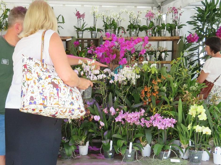 Auch die Mainau selbst ist mit Ständen vertreten. Seltene und schöne Orchideen sind im Angebot. Auch die exklusive Hutmode von Gräfin Diana Bernadotte kann man gegenüber dem Schloss anprobieren und erwerben.