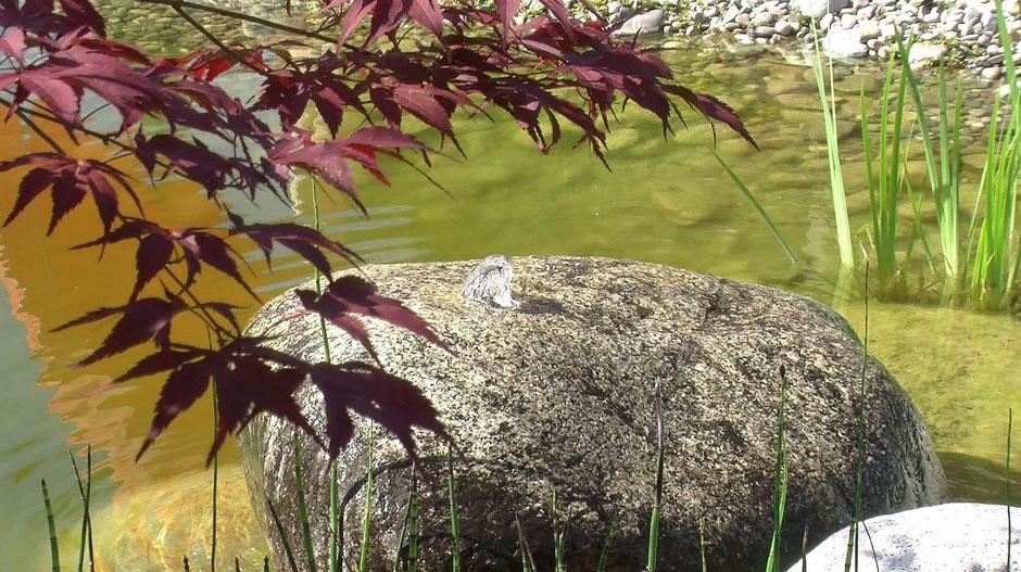 Ein großer Sprudelstein aus Granit vervollständigt die Teichlandschaft. Entspannend das leise Gemurmel des Wassers.