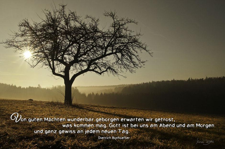 Dietrich Bonhoeffer, Morgenstimmung