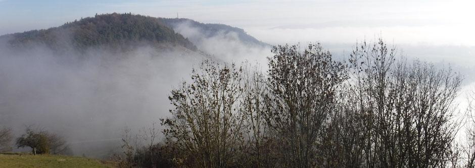 Spitzberg vom Kapellenberg aus, Blickrichtung Tübingen