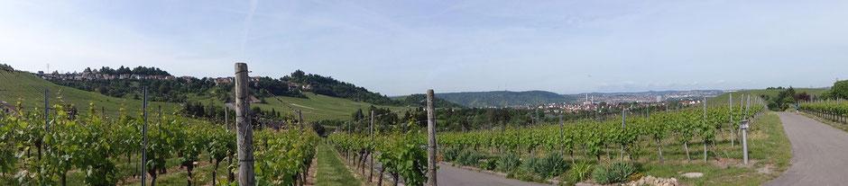 Blick aus den Weinbergen zum Stadtteil Rotenberg, zur Grabkapelle auf dem Württemberg und in Richtung Stuttgart
