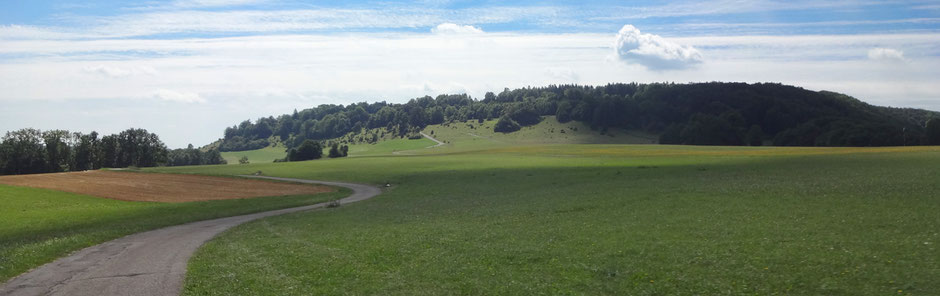 Segelfluggelände Hornberg, Blick zum NSG Kaltes Feld mit Hornberg, Galgenberg und Eierberg