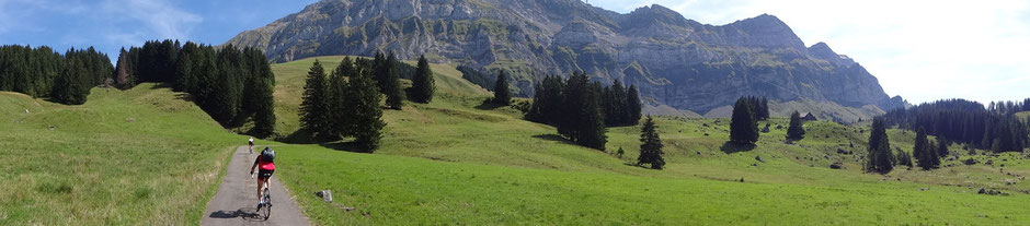 Aufnahme entstand während des Bergauffahrens, leider wurde hierbei der Gipfel etwas gekappt, trotzdem lässt sich das Schwägalp-Panorama gut erkennen
