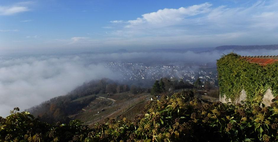 Blick auf das noch im Nebeldunst liegende Wurmlingen vom Kapellenberg