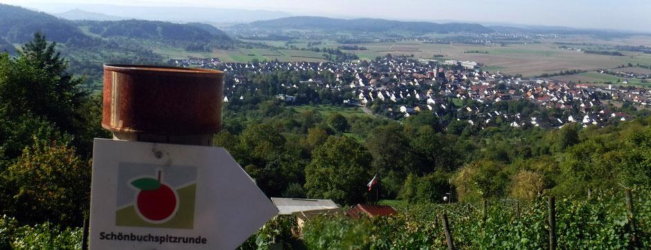 Blick vom Schönbuchspitz, 546 m ü. NHN, auf Entringen