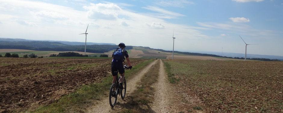 Weilerfeld nördlich von Stötten, mit schon abgeernteten Feldern