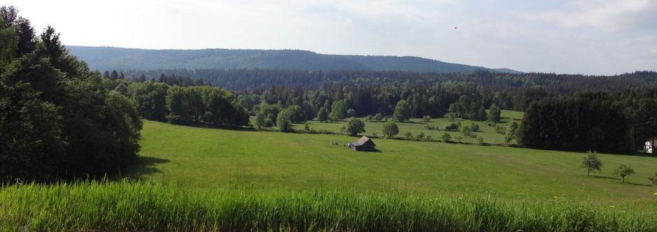 Blick von Dobel über die Neuen Äcker ins Mannenbachtal und dem südlich liegenden Eyachtal