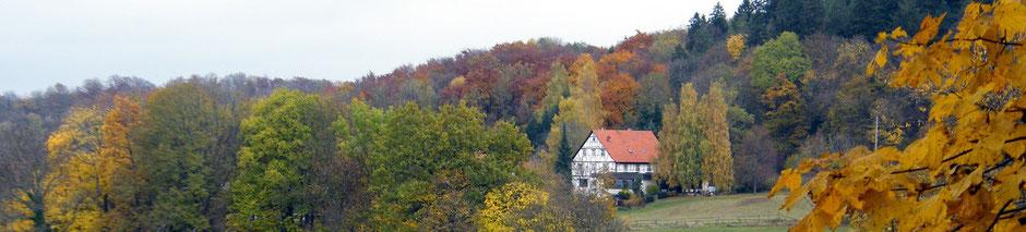 Engelhof, Bild: Elvira