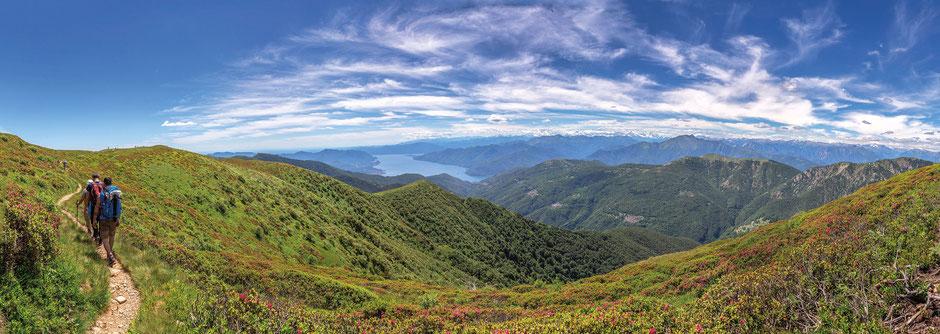 ©MarinForcella-Monte-Tamaro