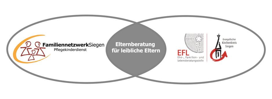 Elternberatung für leibliche Eltern Familiennetzwerk Siegen Pflegekinderdienst