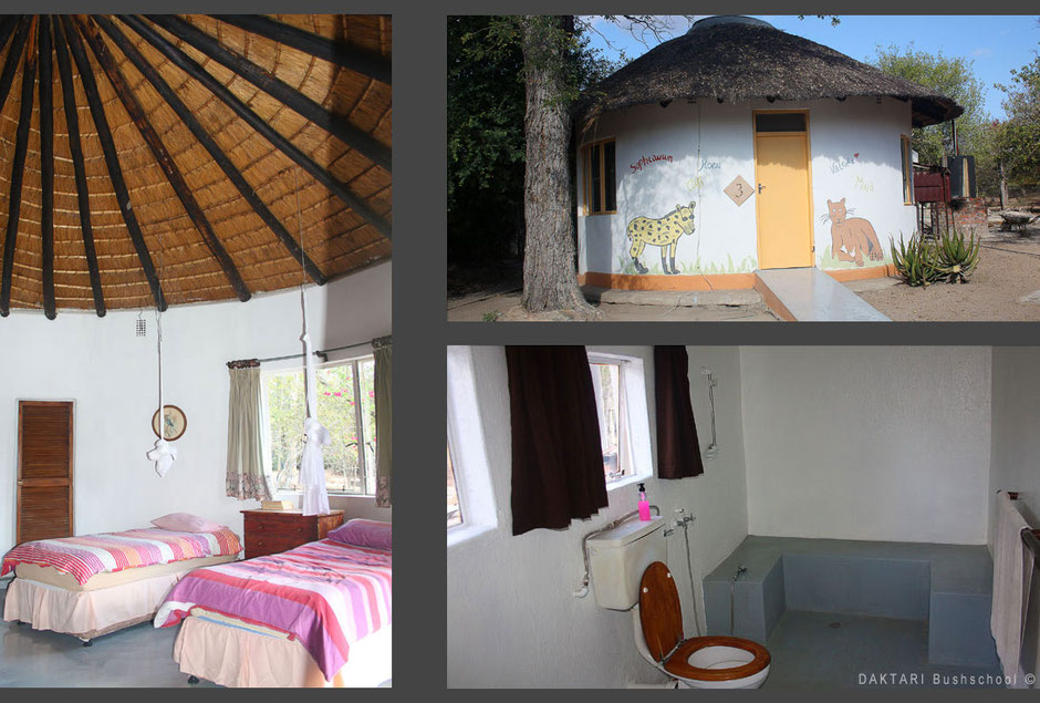 Accomodation at Daktari in South Africa