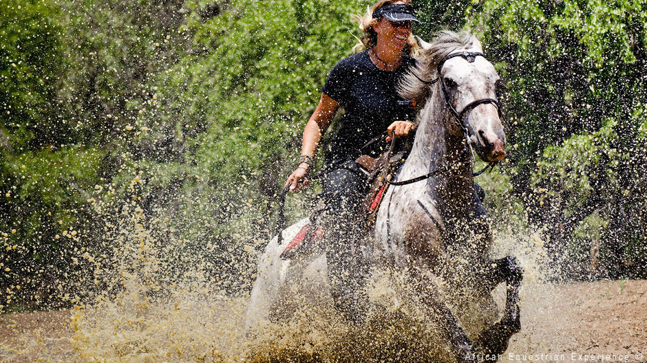 Owner African Equestrian Experience horseriding in water