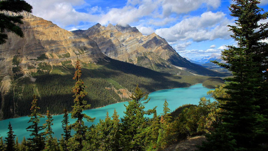 Peyto Lake, Banff Nationalpark