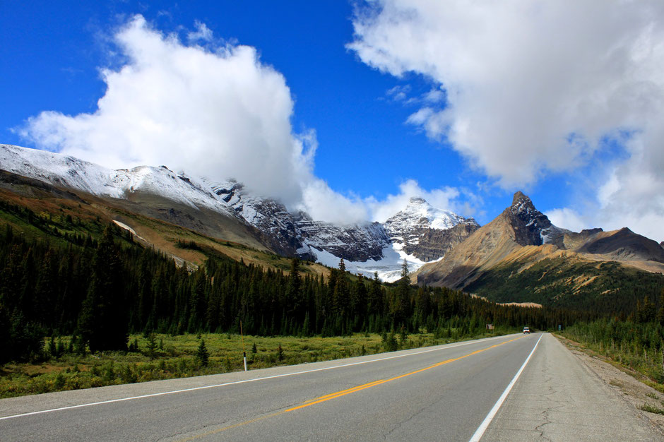 Parkers Ridge, Icefield Parkway, Banff Nationalpark, Canada-Natur-pur