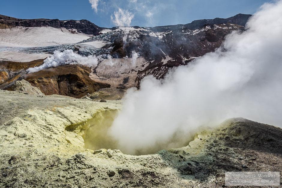 Im Krater des aktiven Mutnovsky Vulkans kann man viel Schwefel an den Solfataren bewundern