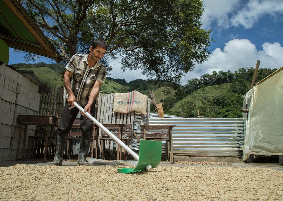 Hier entsteht bester Bio Kaffee, traditionell Hergestellt und direkt und fair gehandelt.