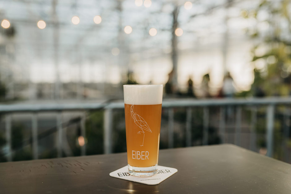 bierbrouwerij-den-haag-eiber-bier