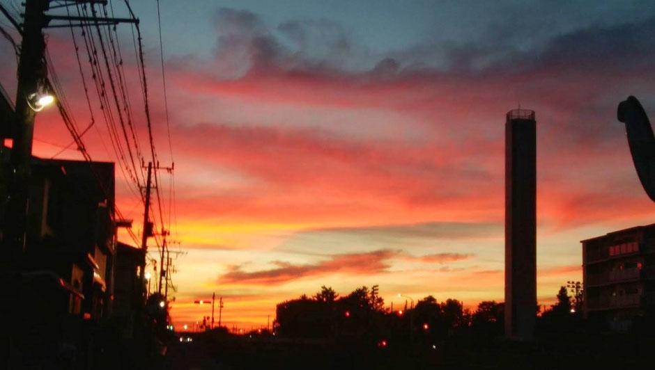 坊守がお寺から撮影した夕日