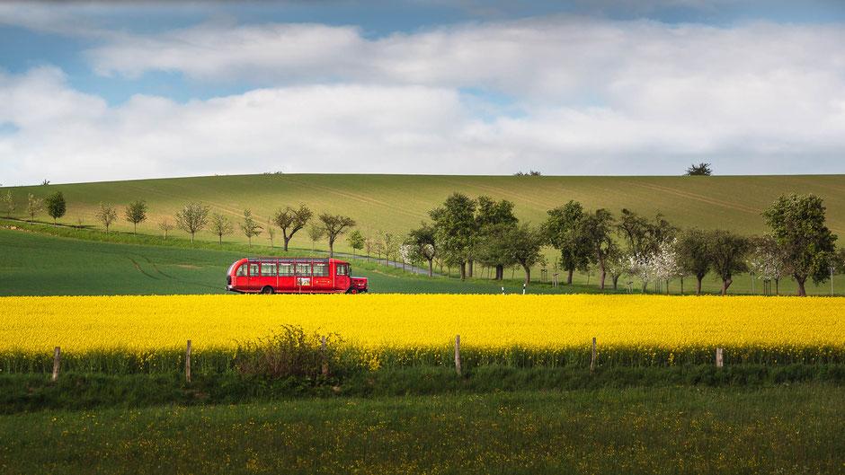 Der rote Bus im Rapsfeld