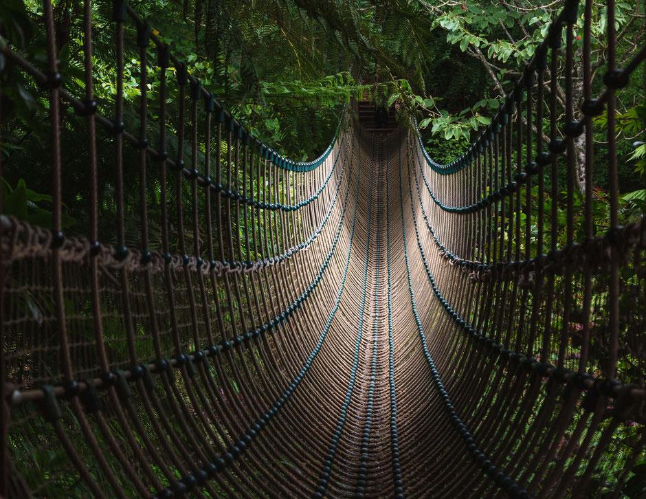 Burmesische Hängebrücke, The Lost Gardens of Heligan, St Austell, Cornwall, GB, Architektur, Brücken, Hängebrücke, Hängeseilbrücke