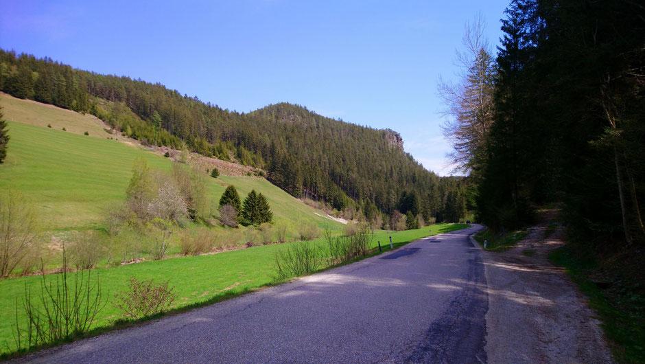 Schindergrabenstraße, Wiesen und Wälder