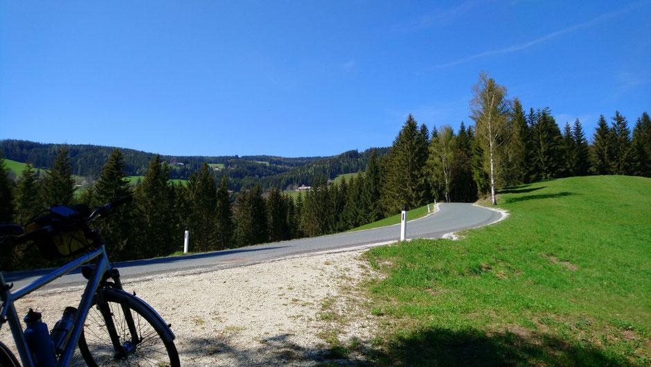 Wälder und Wiesen, Straße zur Bergbausiedlung in St. Kathrein am Hauenstein