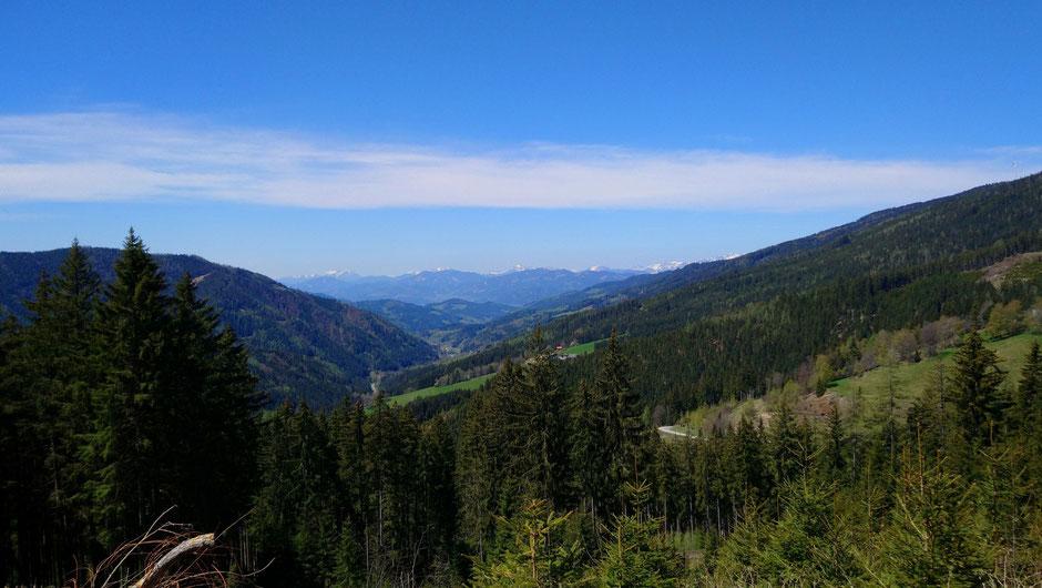 Stanzertal, Alpen, Passstraße, Wälder, Wiesen