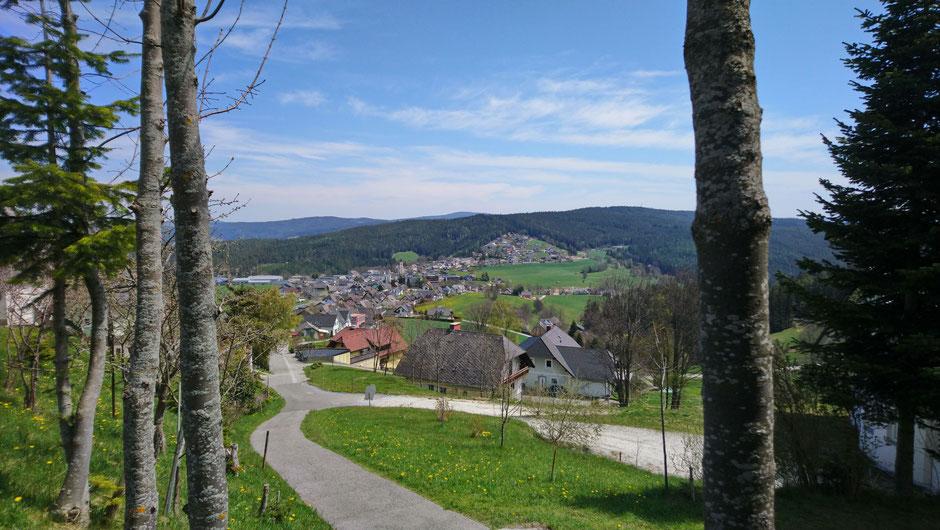 Fischbach, Radweg, Häuser, Wälder und Wiesen
