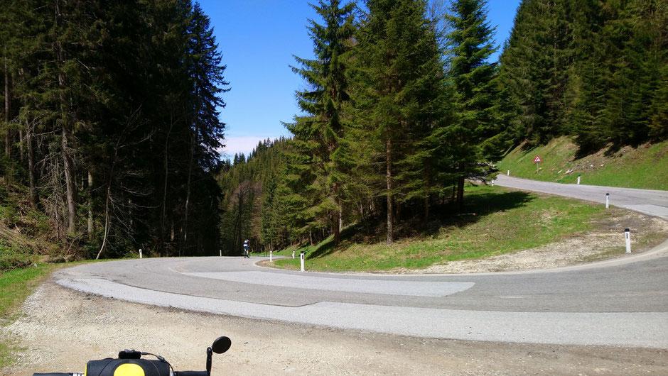 Schanzsattelstraße, Wald, Berge, Radfahrer, Passstraße
