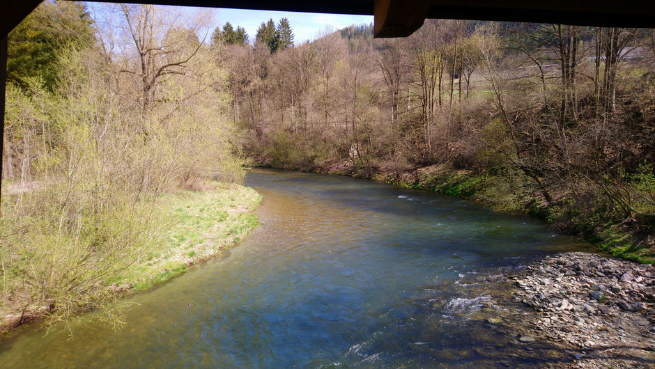 Mürz, Fluß, Wasser, Brücke