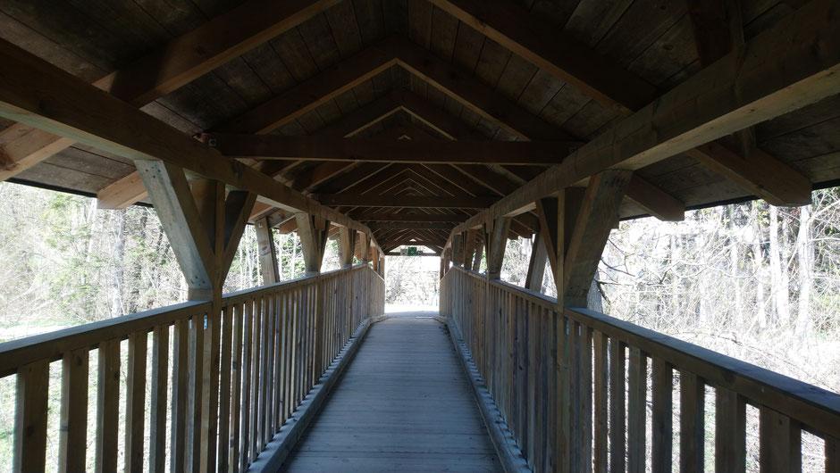 Brücke, Kindberg, Mürztalradweg, R5, Mürz