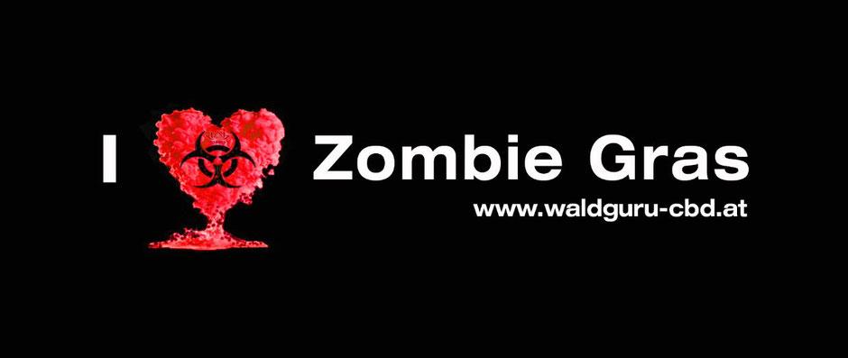 Zombie Gras, CBD Zombie Gras, Whiskey Haze, www.waldguru-cbd.at