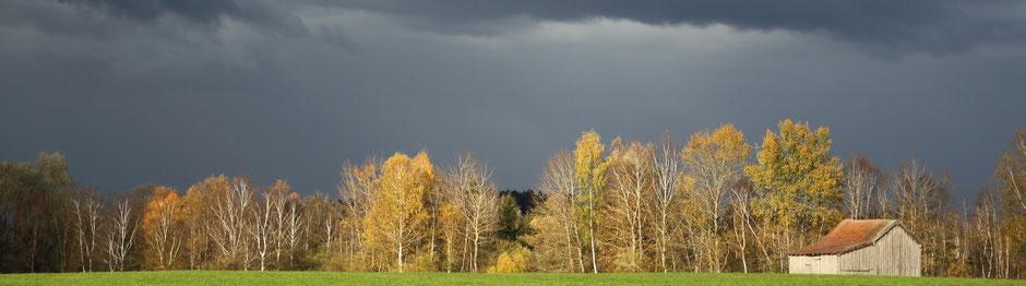 Herbst im blauen Land