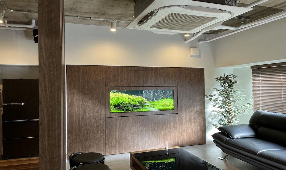 水槽素材の流木を使用した水槽レイアウト事例を説明