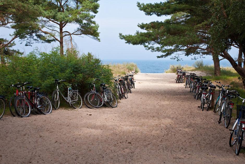 vélos d'occasion garés à l'entrée d'une plage