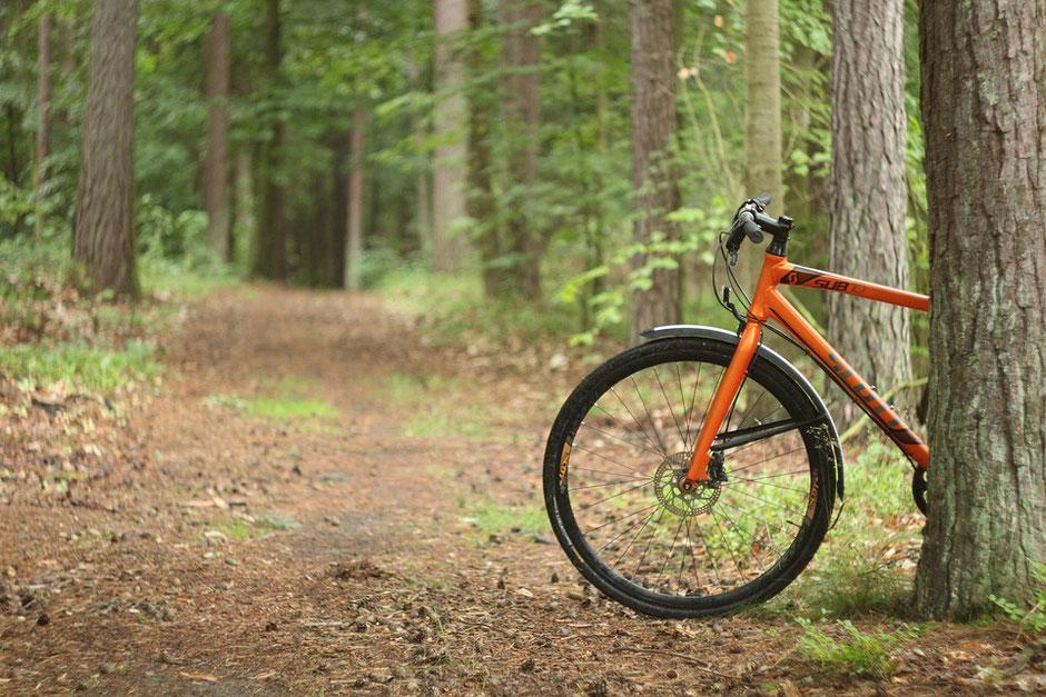 vélo vtt orange dans la forêt