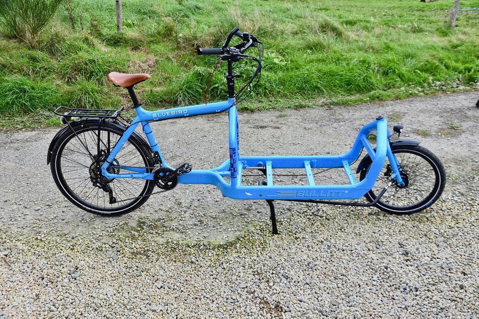 vélo cargo occasion bleu