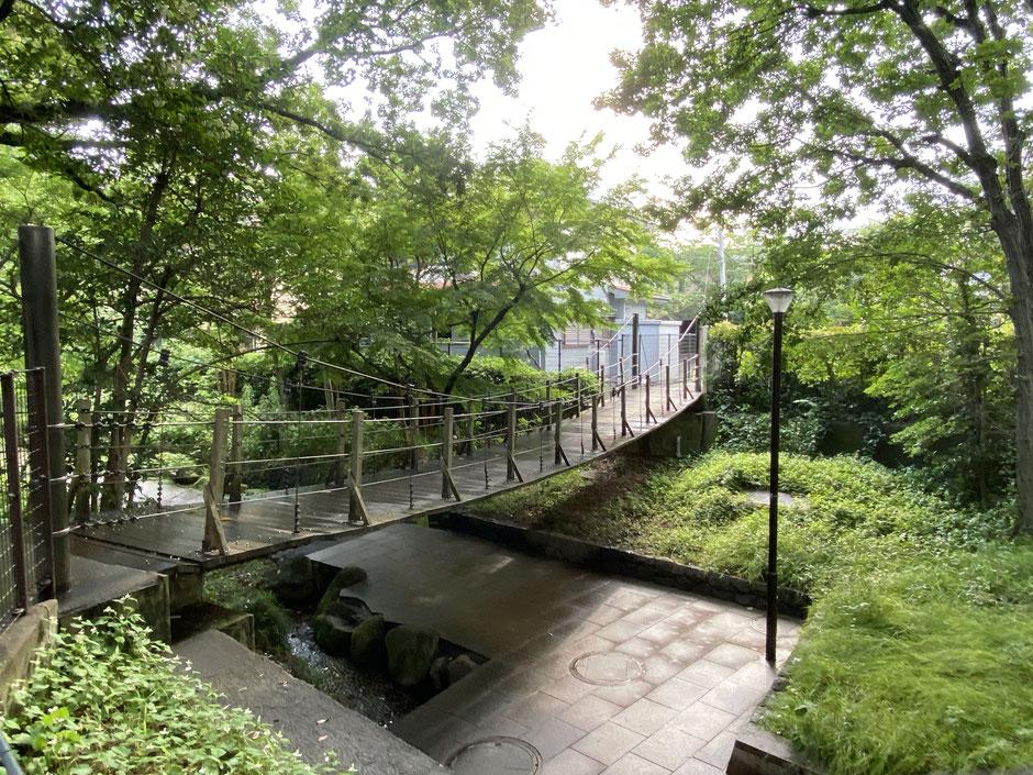 音無さくら緑地 吊り橋
