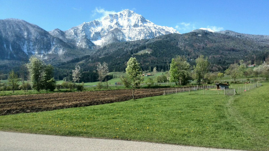 Ferienwohnung Nitzinger in Jechling, mit Blick auf den verschneiten Hochstaufen und Fuderheuberg