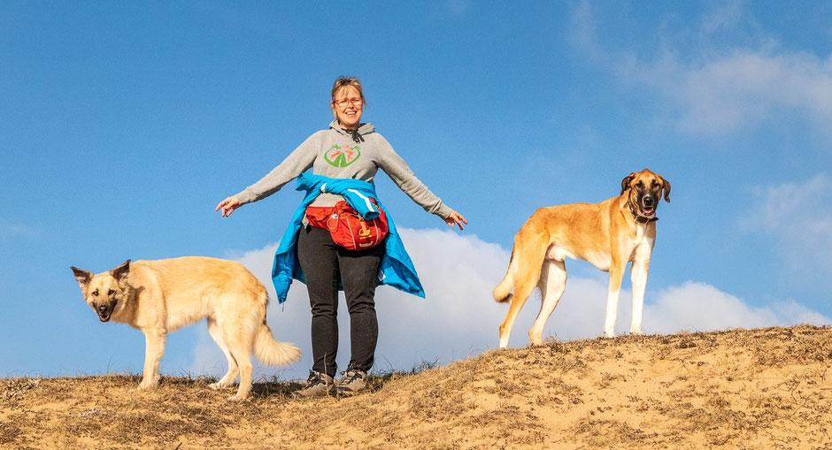 Camping mit Hund, Wohnmobil Urlaub mit Hund