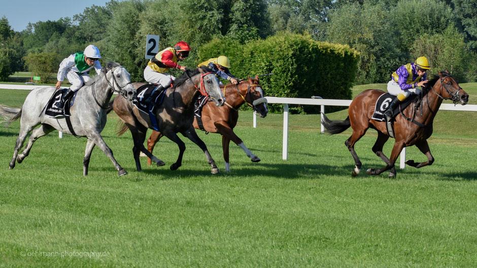 Galopprennbahn München, Pferderennen, Galopprennen, Dr. Ralph Oehlmann, Oehlmann-Photography