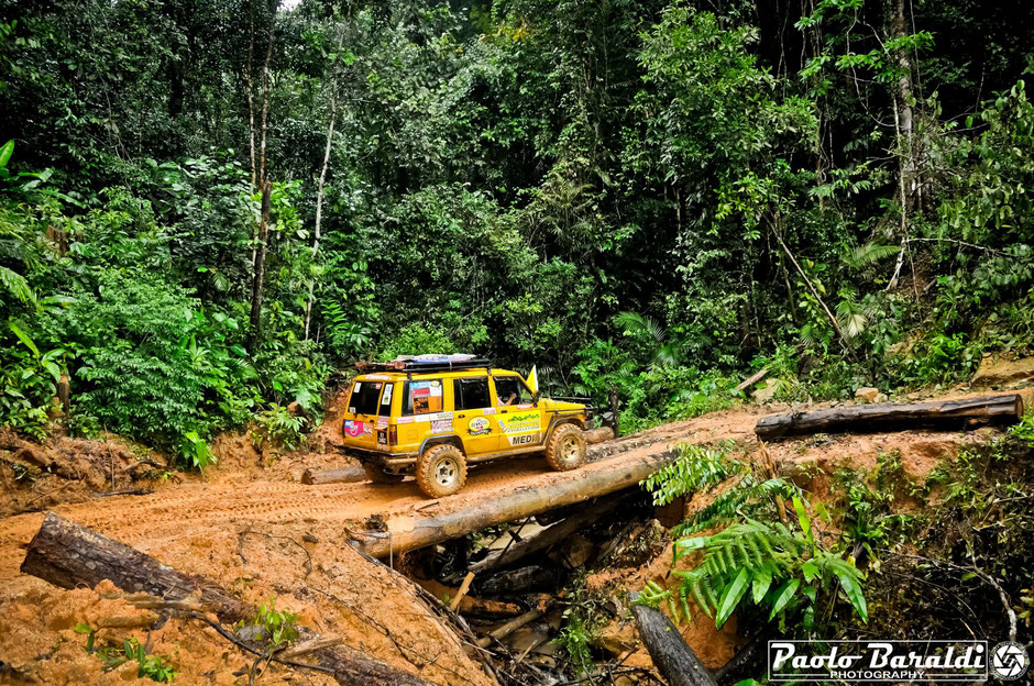 rainforest challenge