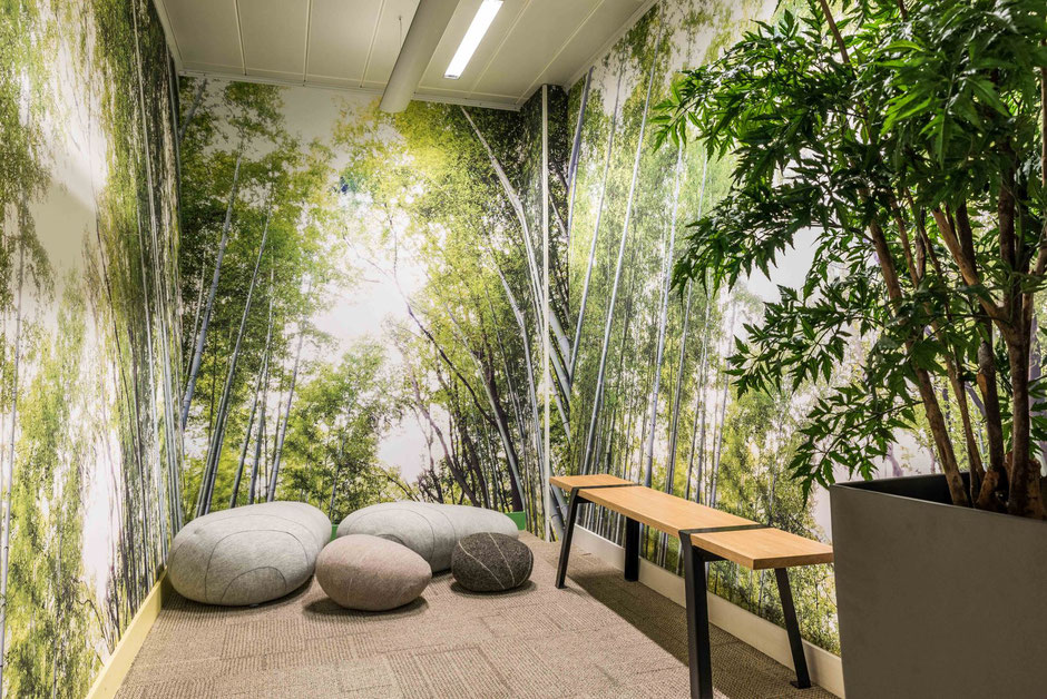 La Défense - Mission: Embellissement et aménagement d'une zone de détente et de sieste au sein de l'entreprise,  8m²