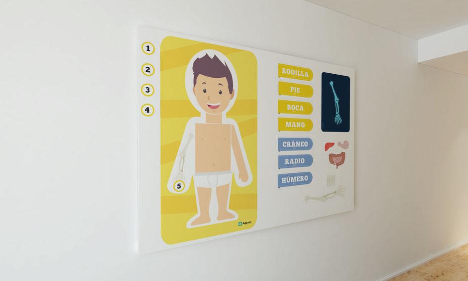 descargar plantillas para aprender cuerpo humano para imprimir profesores aula360