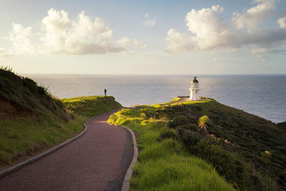 Cape Reinga Lighthouse Pathway