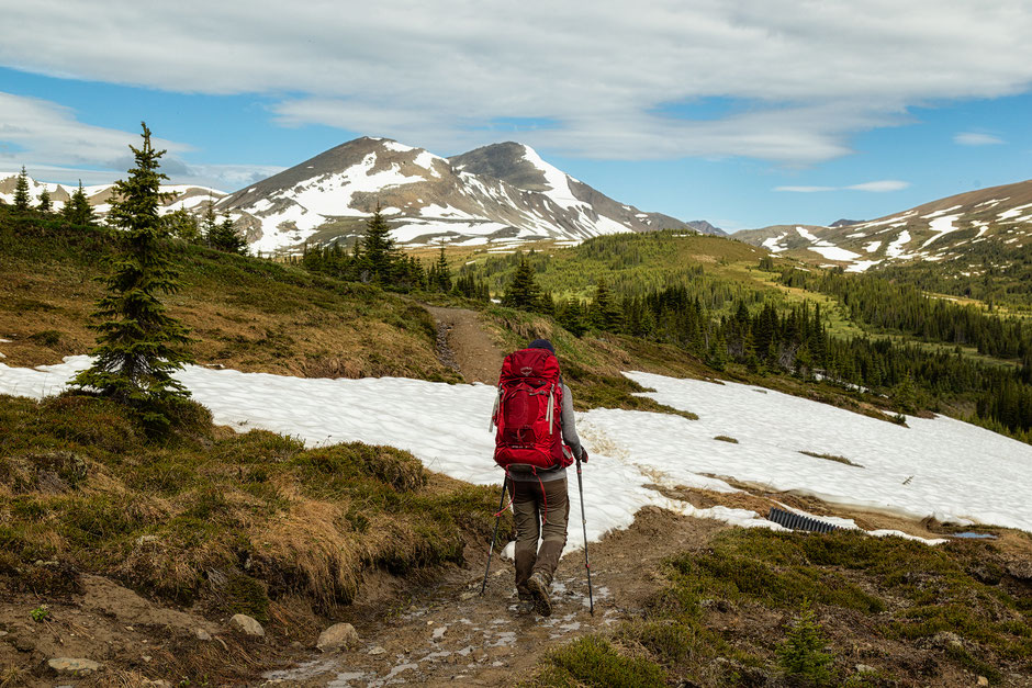 A Short Snowy Section - A hiking guide to the Skyline Trail in Jasper National Park