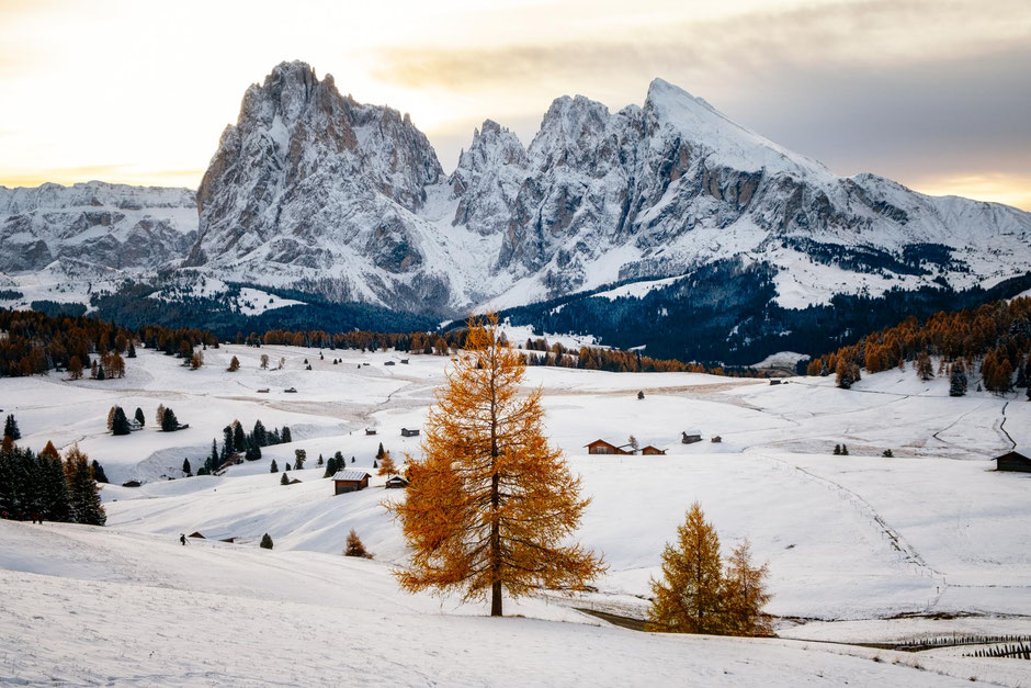 Alpi Di Siusi - one of the best fall photography spots in the Italian Dolomites