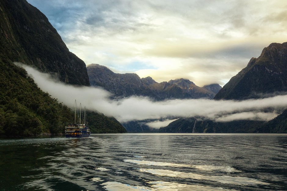Cruising along Milford Sound with Fiordland Discovery